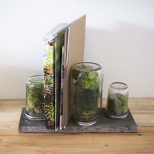 DIY Home Hacks moss mail holder