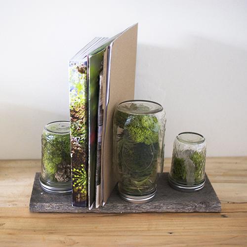 DIY Home Hacks moss mail holder