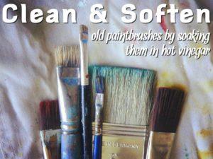 vinegar-paintbrushes