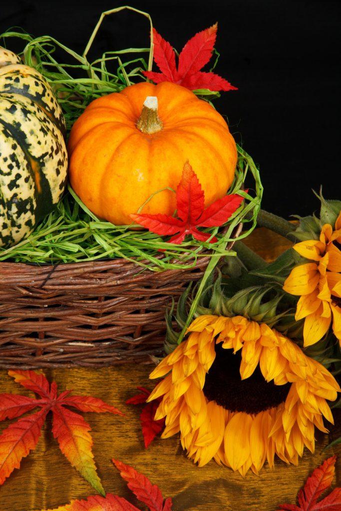 autumn-21454_1920